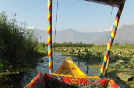 Unterwegs auf dem Dal-See mit einer Shikara