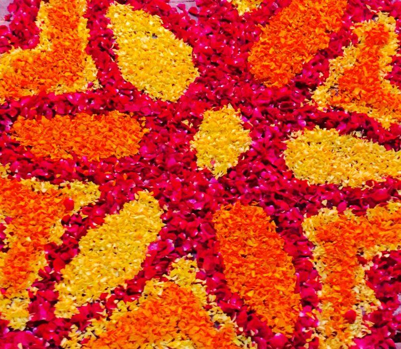 Makar Sankranti, Lohri, Pongal  – Erntedankfeste in Indien