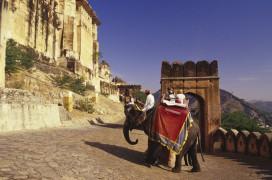 Auf dem Elefantenrücken hinauf zum Amber Fort. © Foto: Tour Vital