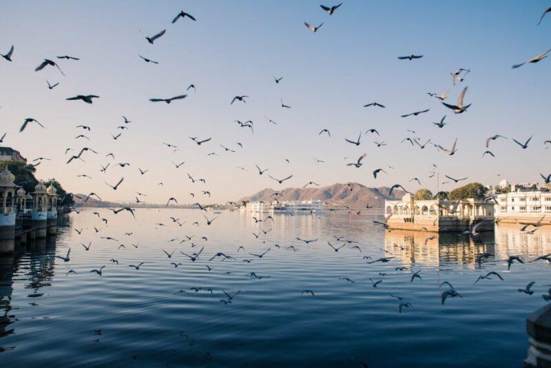 Der künstlich angelegte Pichola See beherbergt neben dem berühmten Taj Lake Palace Hotel auch einen großen begehbaren Tempel und eine kleine, nicht fertiggestellte Tempelanlage.