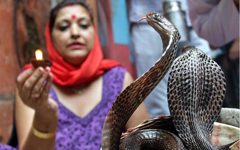 Festivals - Nag Panchami