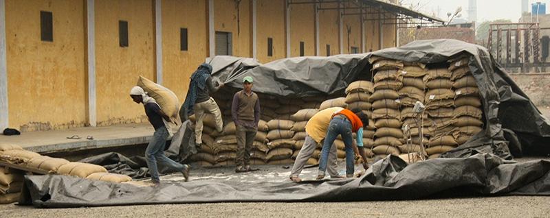 Wenn Reis so gelagert wird (hier eine Lagerstätte der Food Corporation of India), geht oft ein Teil der Ernte verloren. Foto: ADM Institute for the Prevention of Post-harvest Loss