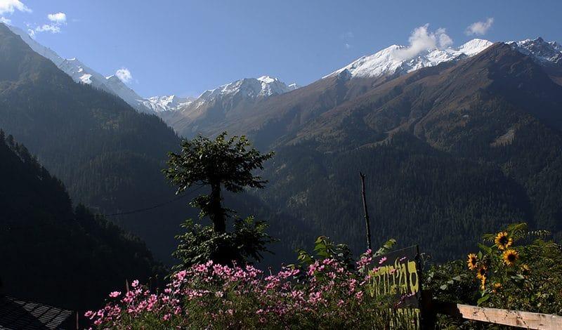 Himachal Pradesh – Eine Erfahrung fürs Leben