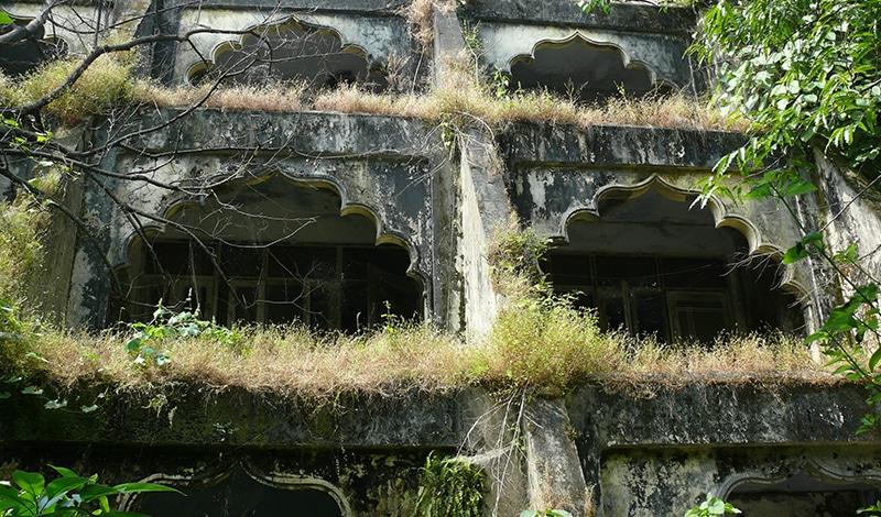Selbst die Mauern der Gebäude sind inzwischen bewachsen. Foto: C. Caristead