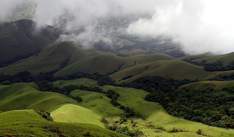 "Die ""rolling hills"" der Westghats bei Kudremukh. Foto: Dhruvaraj S."