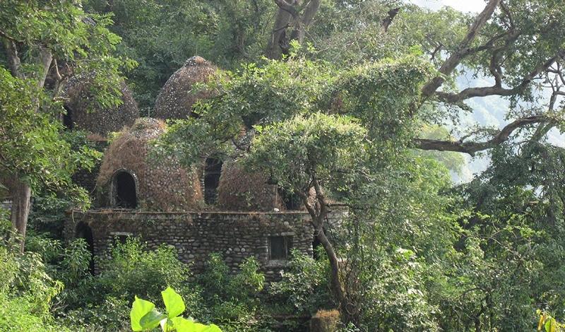 Im Laufe der Jahrzehnte eroberte sich die Natur das Gelände des Ashrams zurück. Foto: Eran Sandler