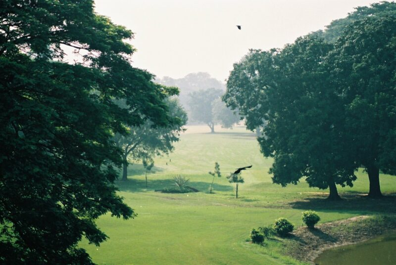 Royal Calcutta Golf Club. Foto: Fergus Ray Murrey
