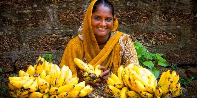 Bananenverkäuferin Goa