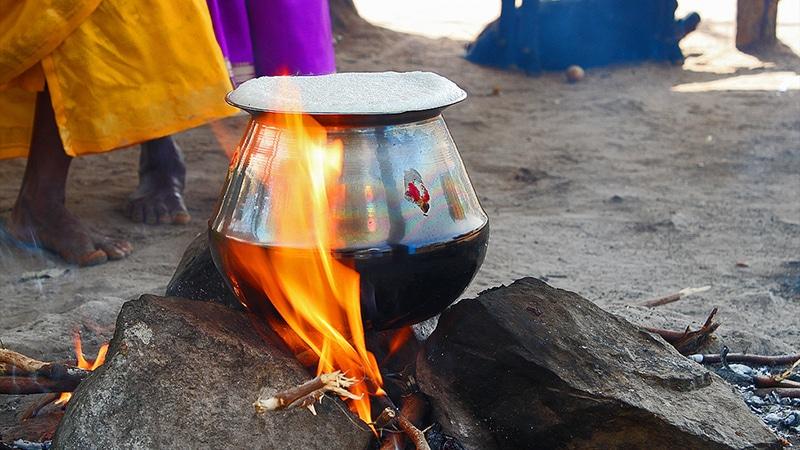 Pongal, das wichtigste Fest in Tamil Nadu. Hier muss der Reistopf überkochen. Foto: J'Ram DJ