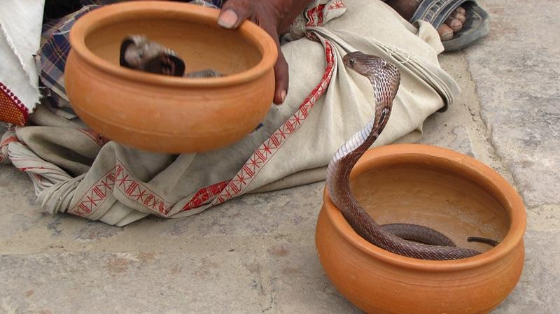 Festivals - Jhapan Mela