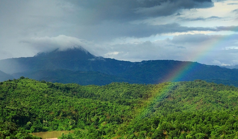 Die grünen Garo Hills in Meghalaya. Foto: Neelima V.