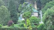 ccl_Parshotam-Lal-Tandon_Botanischer-Garten-Ooty