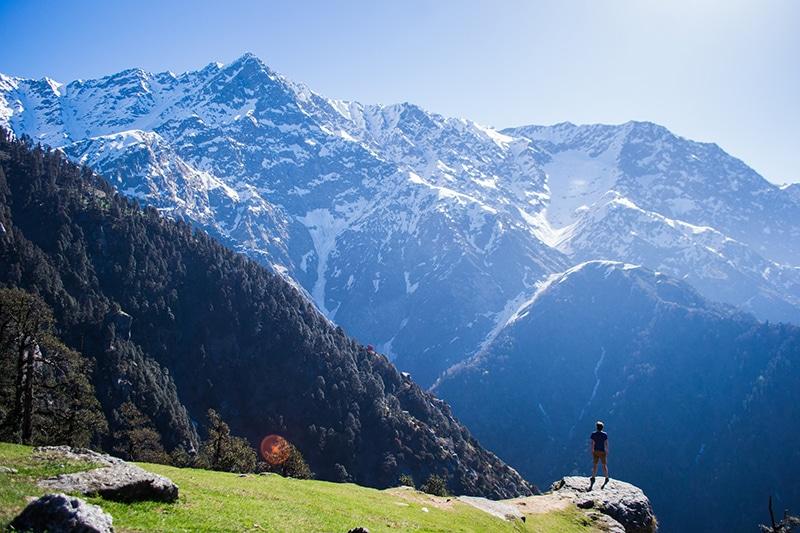 Wandern rund um Dharamsala (Himachal Pradesh). Foto: Rignam Wangkhang