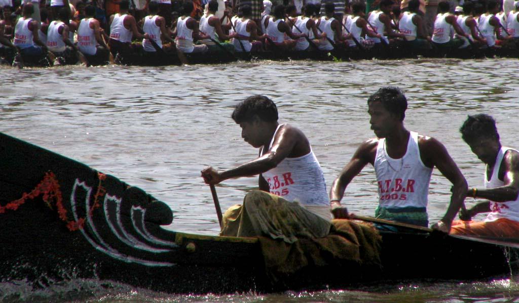 Schlangenbootrennen bei der Nehru Trophy in Kerala. Foto: T. Frey