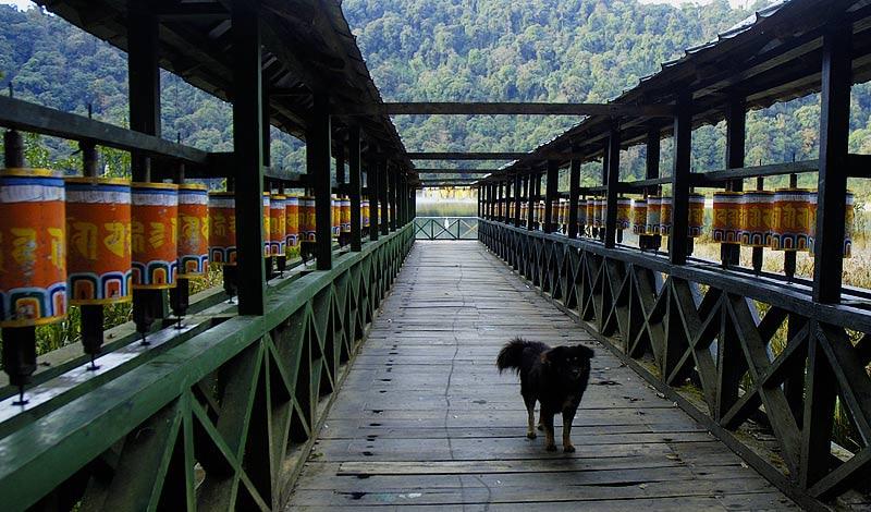 Touristenparadies - Gebetsmühlen in Sikkim