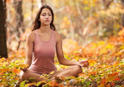 Dhyana- Meditation