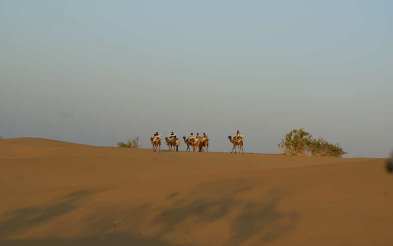 Kamelsafari in Rajasthan. Foto: David Lowry