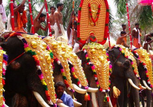 Reich geschmückte Elefanten beim Thrissur Pooram. Foto: Adarsh K.