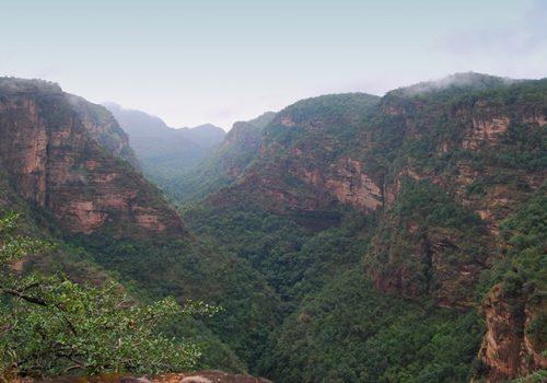 Der Satpura-Höhenzug in MP - von hier stammen viele Heilkräuter. Foto: Aditya Sahay
