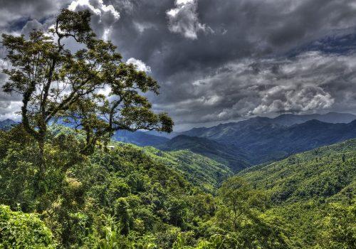 Auf der Reise von Mizoram nach Manipur. Foto: T. Saldhana